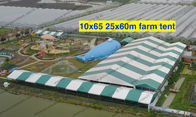 10*65M 25*60M White and Green Customized Color Clear Span Tent PVC Roof Cover Outdoor Event Tents for Farm